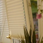 blinds_pleated01g_1292415224